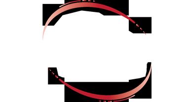 lifeflight_logo.png